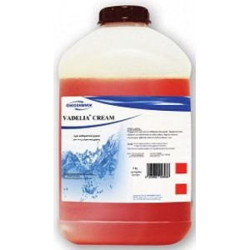 ΟΙΚΟΧΗΜΙΚΗ Vadelia Cream Hand Soap 5KG 13080801003 5205662006086