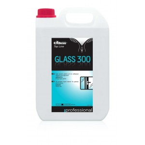Endless Top Line Glass 300 Glass Cleaner 5LT 1205350300 5202995105578